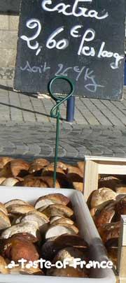 Concarneau market mushrooms
