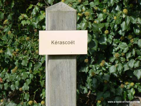 Kerascoet sign Brittany