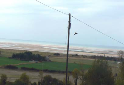 Montmartin sur Mer beach Manche Normandy