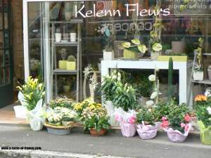 Plouescat flower shop Brittany