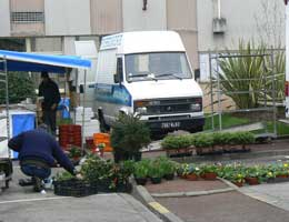 Wimereux market stall picture