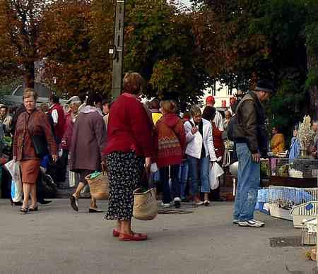 Audruicq market picture 3