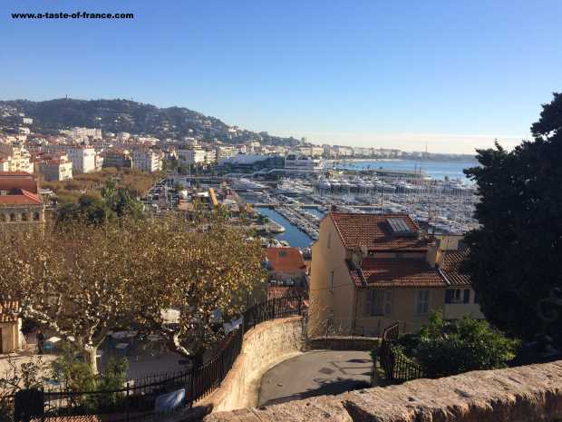 cannes harbour picture