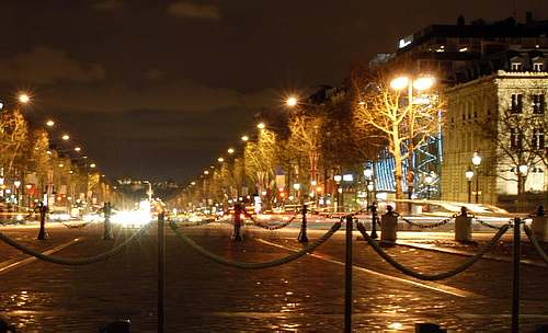 The Champs Elysées avenue  picture