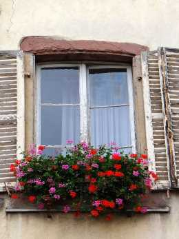 Colmar window