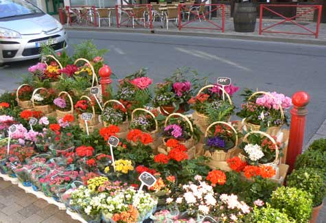 Cormeilles Normandy flower market
