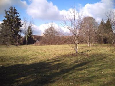 3 acres of pasture
