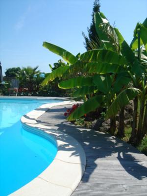 large shaped pool