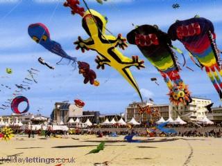 'Kite festival'