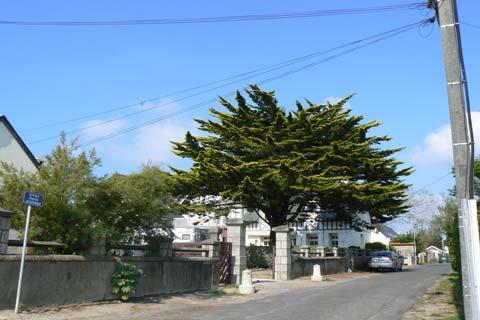 Jullouville street Manche Normandy