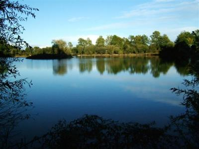 French Business Development Opportunity with Carp Lake £250,000 with 22 acres 10 minutes from the medieval town of Parthenay, Poitou