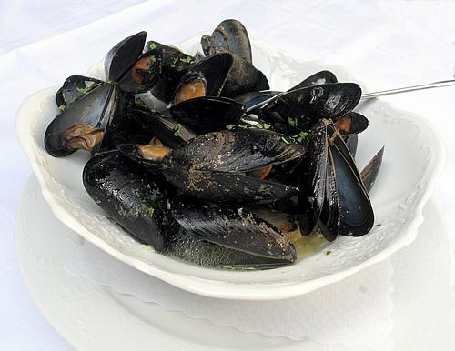 mussels in wine picture