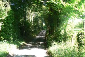 narrow lane Normandy