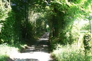 narrow lane Normandy