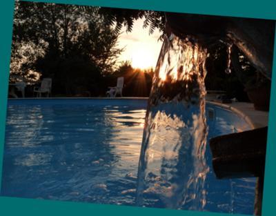 the pool garden