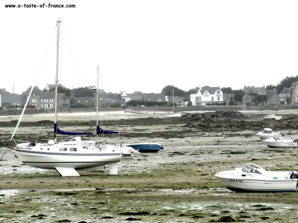 Brignogan-plages estuary Brittany
