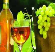 Carcassonne wine