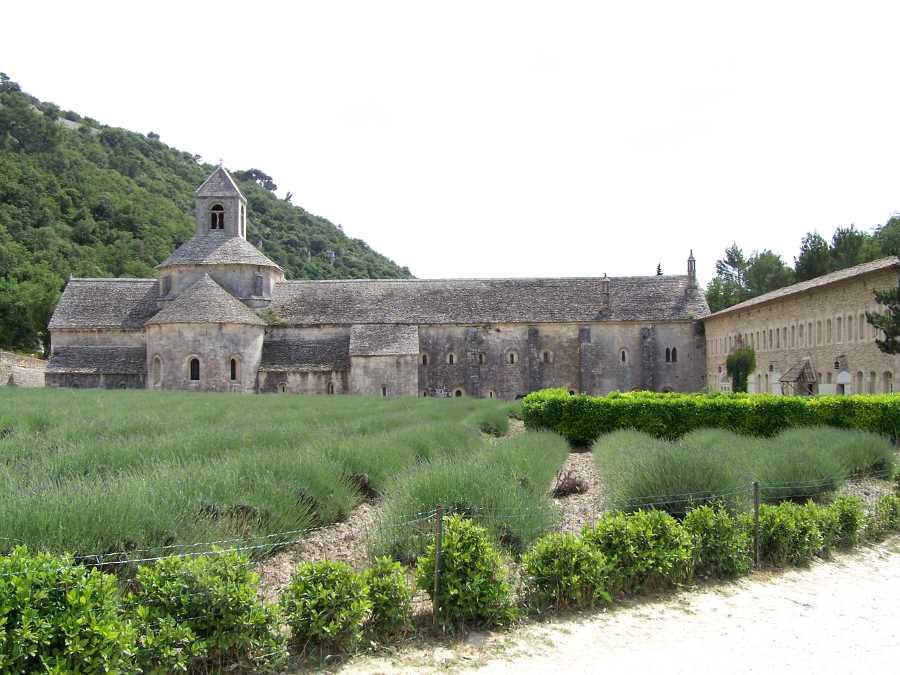 Senanque Abbey  Provence France