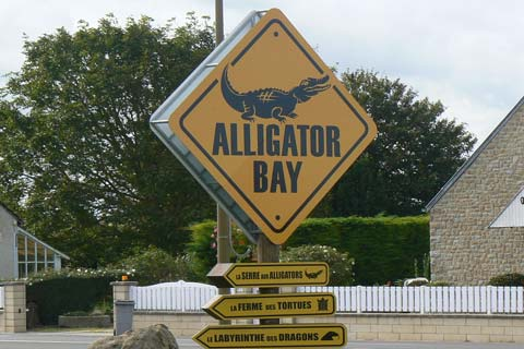 Alligator bay sign manche Normandy