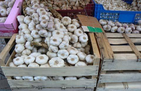 Granville market garlic stall Manche Normandy
