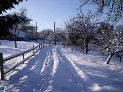 Driveway in snow