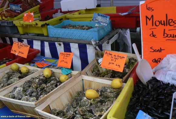 Roscoff moules stall