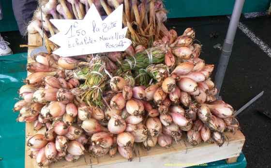 Roscoff onions