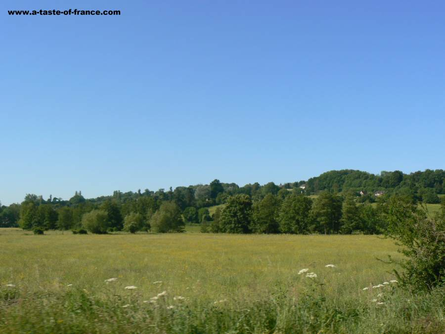 Ouilly le VicomteFrance
