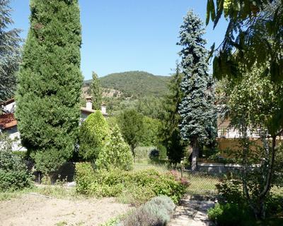 Garden behind