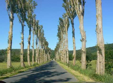Quilly le Vicomte road Calvados Normandy